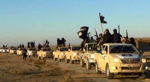 Islamic State convoy, Anbar Province, January 2014